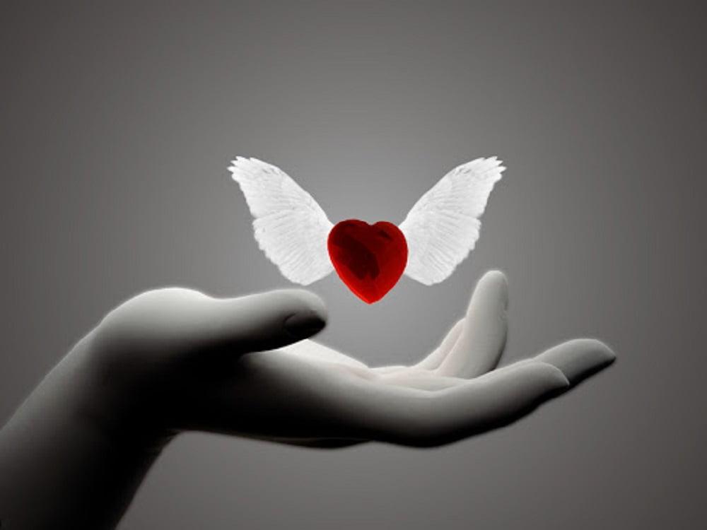 Мы никогда до конца не сможем понять, что же такое любовь. Это самая огромная тайна человечества и самое большое и глубокое чувство. Иногда, встретившись случайным взглядом люди, проживают вместе целую жизнь, а бывает, что прожив огромное количество лет рядом, люди не в состоянии переносить присутствие друг друга.