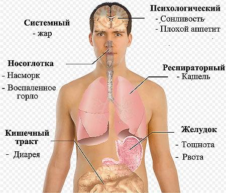 Вирусные инфекционные заболевания
